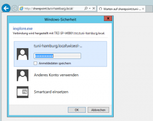 Windows-Sicherheit Login Fenster