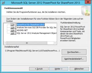 Microsoft SQL Server 2012 PowerPivot für SharePoint 2013 - Funktionsauswahl