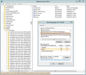 Registry - Perflib - Leistungsüberwachungsbenutzer - Lesen