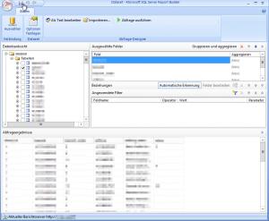 Report Builder - Dataset - Datenbankansicht - Tabellen - Ausgewählte Felder - Abfrageergebnisse - Speichern Button - SharePoint 2013 - SSRS