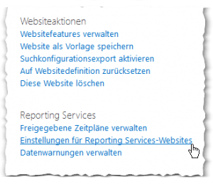 Websiteeinstellungen - Einstellungen für Reporting Services-Websites